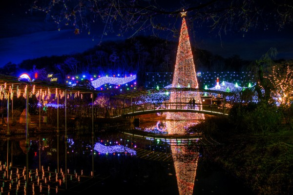Những địa điểm đẹp nhất mùa giáng sinh Nhật Bản