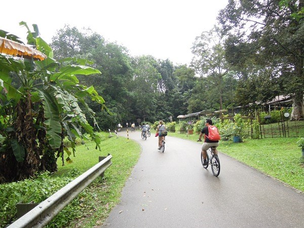 Pulau Ubin2