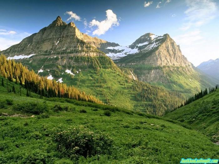 khu bảo tồn thiên nhiên Tidbinbilla