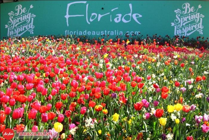 le hoi hoa floriade1