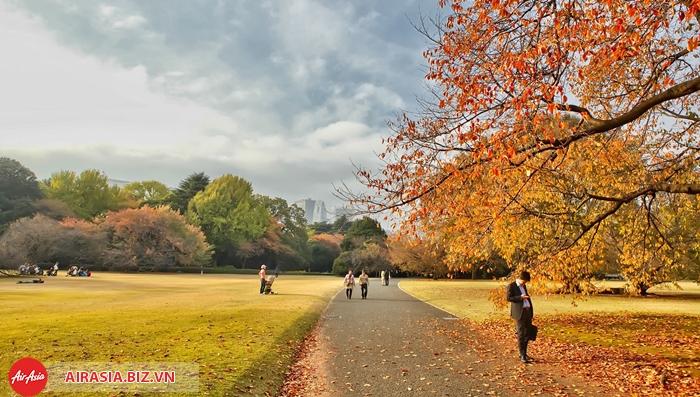 Thủ đô Tokyo mùa thu
